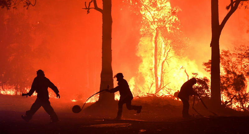 https: img.okezone.com content 2020 01 03 18 2148790 hampir-setengah-miliar-hewan-diperkirakan-mati-akibat-kebakaran-hutan-australia-YDl86LiK4D.jpg