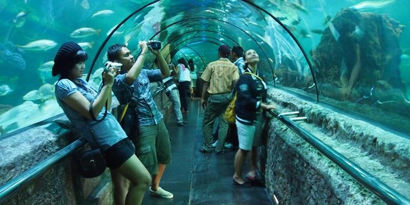 https: img.okezone.com content 2020 01 07 406 2150096 5-destinasi-wisata-yang-tetap-asyik-dikunjungi-saat-musim-hujan-pDmTtyQ3ng.jpg
