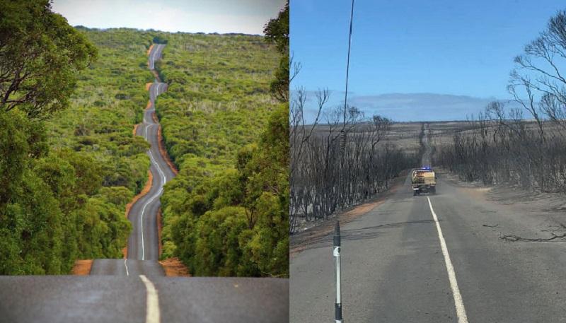 https: img.okezone.com content 2020 01 11 612 2151759 begini-kondisi-sebelum-dan-sesudah-kebakaran-hutan-di-australia-bikin-hati-teriris-bu1w7BKgRH.jpg