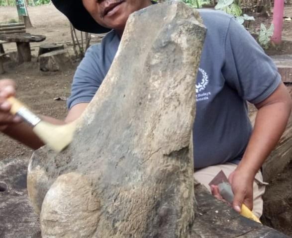 https: img.okezone.com content 2020 01 16 525 2153455 warga-indramayu-temukan-fosil-gajah-purba-berusia-1-5-juta-tahun-SJ2koZ32ZN.jpg