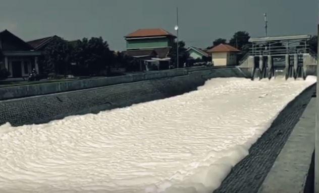 https: img.okezone.com content 2020 01 18 519 2154794 sungai-tertutup-busa-sepanjang-1-kilometer-hebohkan-warga-sidoarjo-1upWqN1KCm.JPG