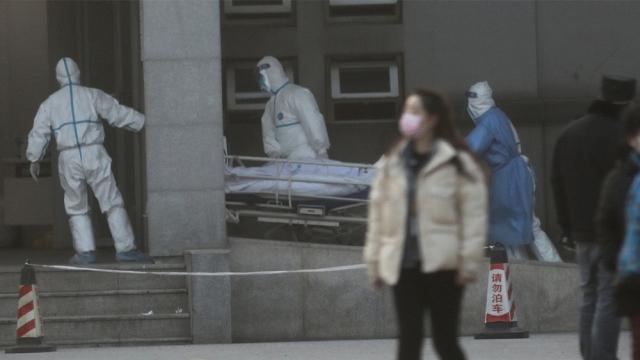 Fakta-Fakta Virus Korona China yang Telah Merenggut 4 Jiwa