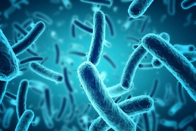 https: img.okezone.com content 2020 01 22 56 2156511 apa-perbedaan-antara-bakteri-dan-virus-ifzzjMKwlS.jpg