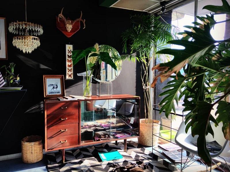 https: img.okezone.com content 2020 01 24 196 2157986 ide-dekorasi-taman-indoor-minimalis-modern-bikin-rumah-jadi-nyaman-6sbOLBUgw0.jpg