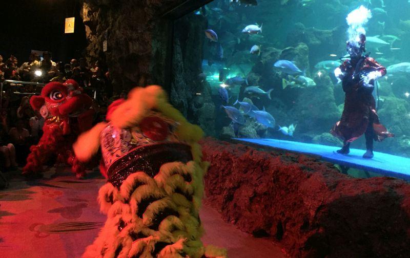 https: img.okezone.com content 2020 01 26 406 2158562 aksi-barongsai-menyelam-dalam-air-rayakan-imlek-usir-setan-atau-ikan-FryEYkn9cl.jpg