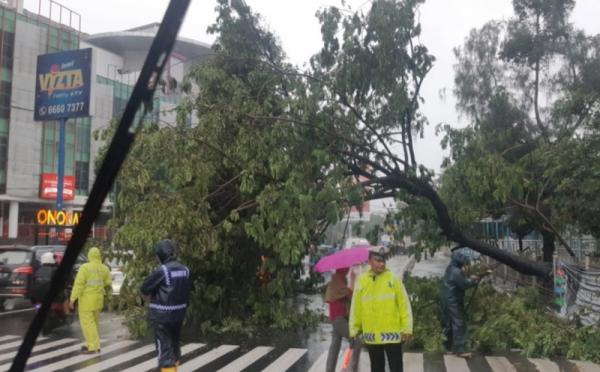 https: img.okezone.com content 2020 02 01 337 2161630 lalu-lintas-di-pluit-tersendat-imbas-pohon-tumbang-jyYRZCFHSE.jpg