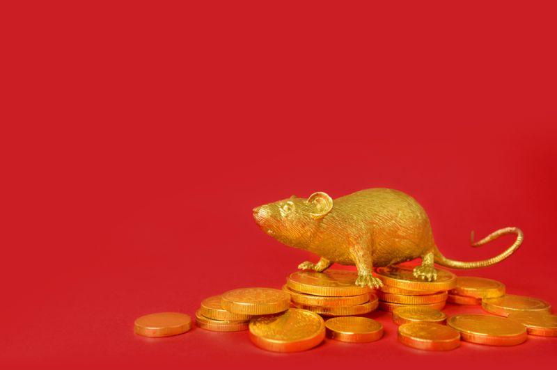 https: img.okezone.com content 2020 02 03 612 2162771 menebak-jodoh-shio-tikus-akur-dengan-monyet-terlalu-lunak-dengan-anjing-I3lYtKb9q5.jpg