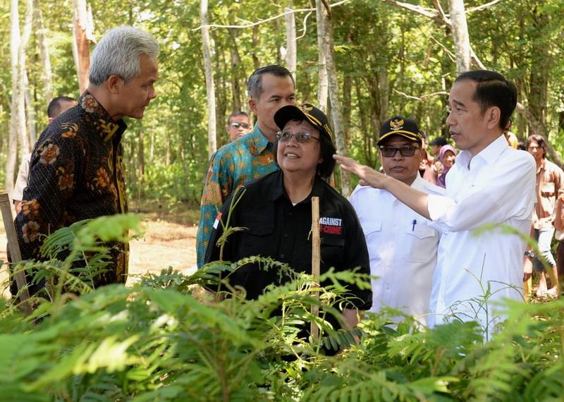 https: img.okezone.com content 2020 02 15 512 2168994 presiden-jokowi-ajak-masyarakat-pulihkan-hulu-das-dengan-agroforestri-tERewqnBTY.jpg