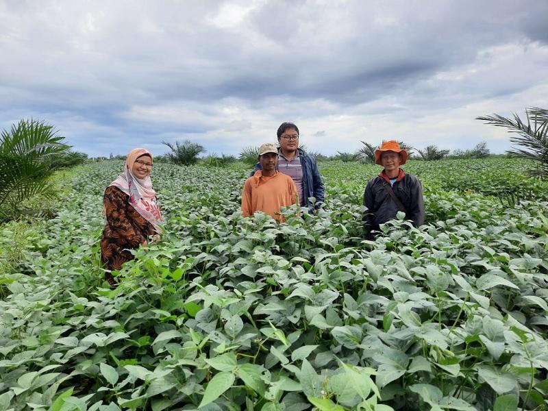 https: img.okezone.com content 2020 02 19 1 2170949 manfaatkan-tumpangsari-kabupaten-pali-swasembada-benih-kedelai-2020-JaIcX3Q1lT.jpg