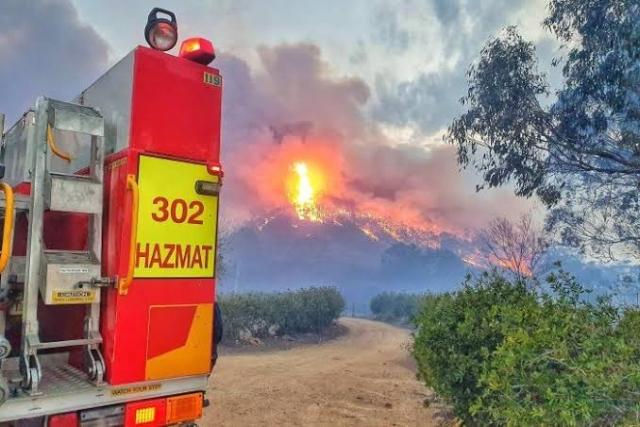 https: img.okezone.com content 2020 02 19 18 2171057 percepat-pemulihan-kebakaran-hutan-australia-izinkan-turis-ransel-tinggal-hingga-12-bulan-5yAqaDqv5o.jpg