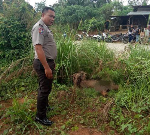 https: img.okezone.com content 2020 02 25 340 2173832 pengusaha-di-pekanbaru-jadi-korban-pembunuhan-mobil-terbakar-21ytvqGbnG.jpg