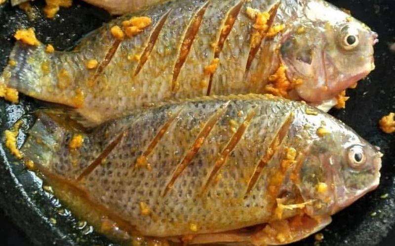 Resep Ikan Ungkep Bumbu Kuning Enak Tinggal Goreng Okezone Lifestyle