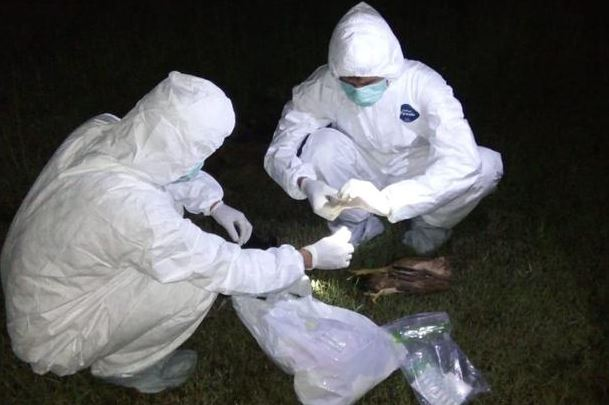 https: img.okezone.com content 2020 03 05 338 2178345 heboh-hewan-yang-mendadak-mati-di-cibarusah-diduga-keracunan-Q6w8MKU7JB.JPG