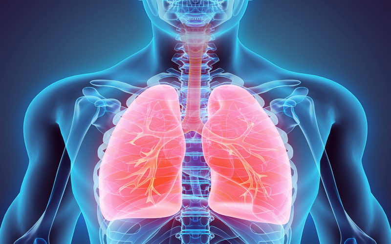 https: img.okezone.com content 2020 04 03 620 2193412 cara-mudah-menjaga-paru-paru-tetap-sehat-saat-pandemi-covid-19-1Hih8AJ0Ts.jpg