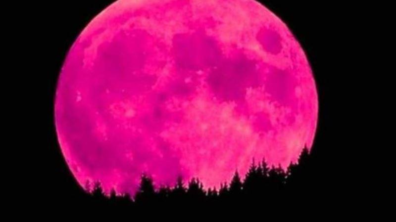 https: img.okezone.com content 2020 04 08 56 2196123 bulan-purnama-supermoon-tandai-munculnya-lumut-merah-muda-SP6ucjBcz2.jpg