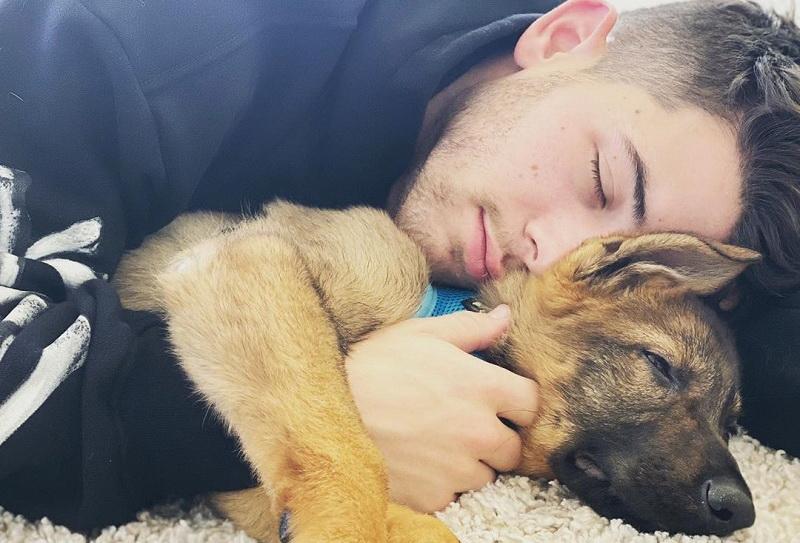 https: img.okezone.com content 2020 04 26 33 2205053 gabut-saat-lockdown-nick-jonas-bicara-pada-anjingnya-5s8vSxCBB2.jpg
