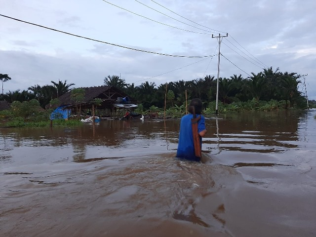 https: img.okezone.com content 2020 05 02 340 2208236 4-kecamatan-dilanda-banjir-pemkab-mentawai-tetapkan-status-tanggap-darurat-ONREtfReFp.jpg