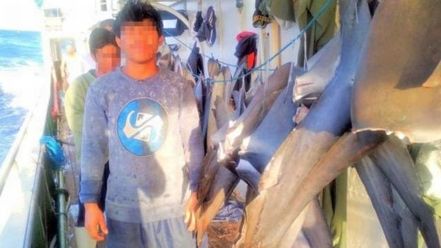 https: img.okezone.com content 2020 05 09 337 2211360 usut-tuntas-perbudakan-abk-indonesia-di-kapal-china-n1NCIxOksm.jpg