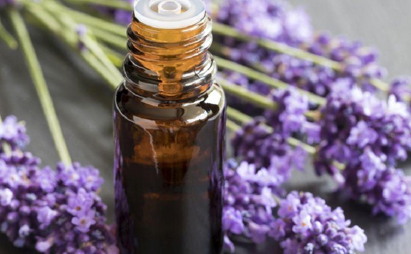 https: img.okezone.com content 2020 05 14 481 2214275 5-minyak-aromaterapi-bantu-usir-stres-di-tengah-pandemi-covid-19-kl17qP31mB.jpg