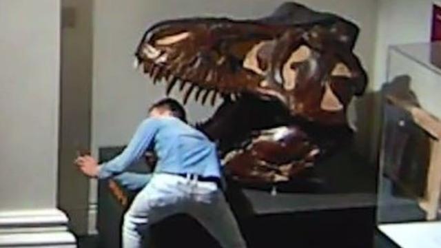 https: img.okezone.com content 2020 05 18 18 2215753 pria-bobol-museum-lalu-selfie-dengan-tengkorak-dinosaurus-qW3EPY4f0c.jpg