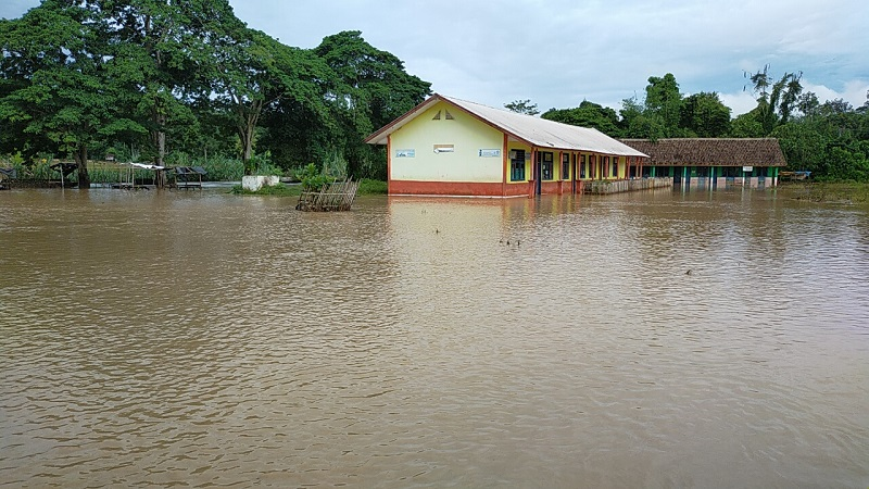 https: img.okezone.com content 2020 05 21 610 2217331 terendam-banjir-sawah-3-5-hektare-di-oku-selatan-terancam-gagal-panen-pz3lrtPZhE.jfif
