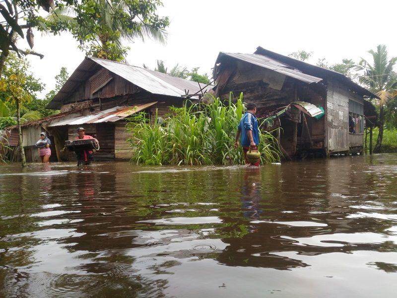 https: img.okezone.com content 2020 05 25 340 2219204 sungai-meluap-2-desa-di-malaka-barat-direndam-banjir-setinggi-1-meter-jv2Uet2xBs.jpg