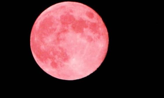 https: img.okezone.com content 2020 06 05 337 2225147 mengenal-fenomena-bulan-stroberi-yang-muncul-nanti-malam-s4yVAUFNR4.jpg