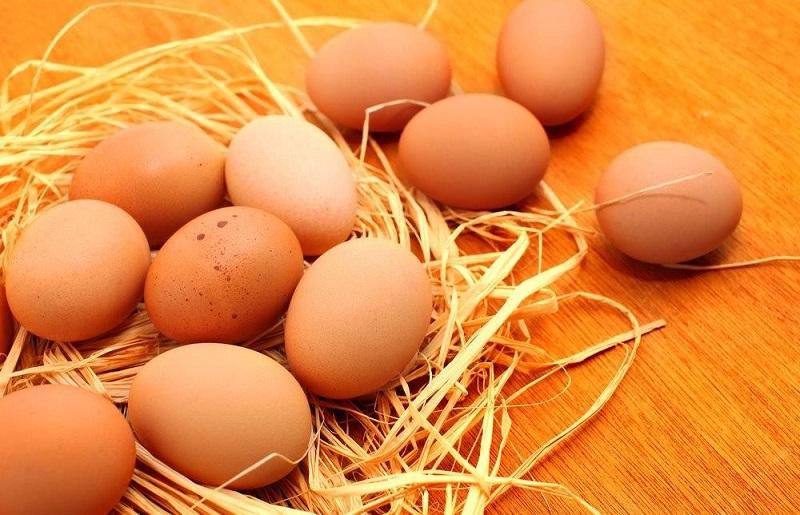 https: img.okezone.com content 2020 06 12 320 2229110 bahayanya-bila-telur-infertil-dikonsumi-rentan-sarang-bakteri-hingga-jamur-dcrLeWJZbC.jpg