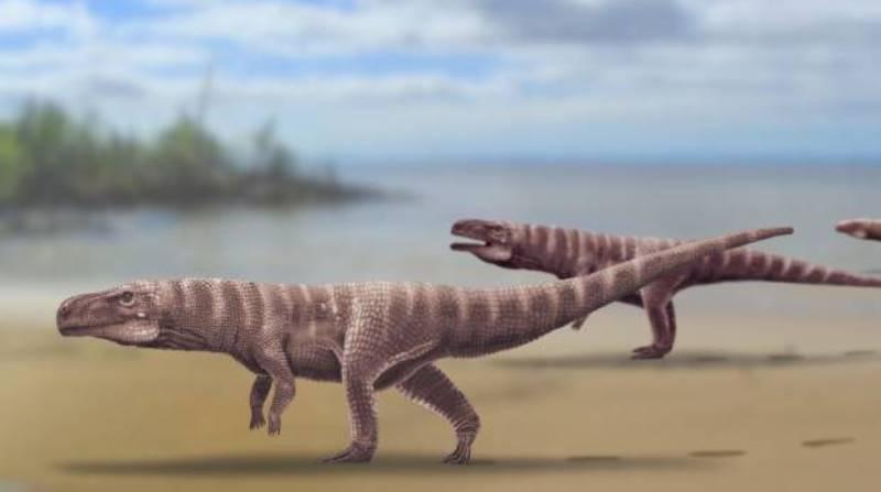 https: img.okezone.com content 2020 06 12 56 2228748 ditemukan-jejak-buaya-purba-yang-hidup-120-juta-tahun-lalu-qNvzPlVWXF.jpg