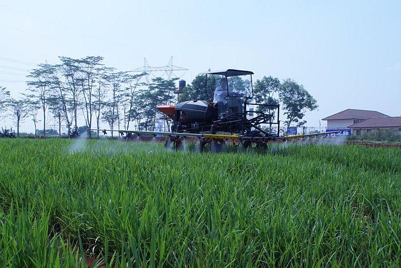 https: img.okezone.com content 2020 06 13 320 2229370 jadi-food-estate-apa-aja-sih-potensi-pertanian-di-kalteng-8E9WFW3IqA.jpg