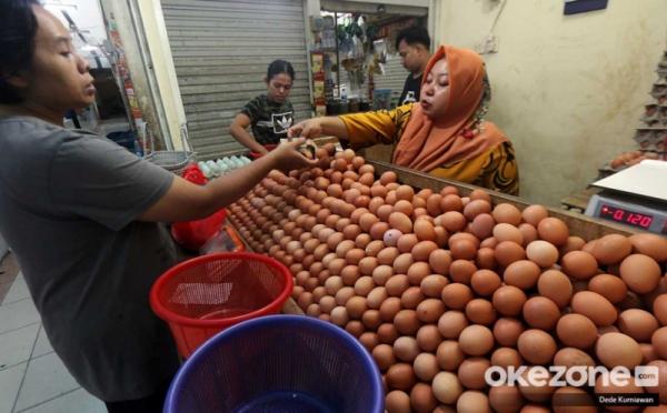 https: img.okezone.com content 2020 06 14 320 2229726 kenapa-telur-infertil-bahaya-dikonsumsi-ini-penjelasannya-9WV3z47RYh.jpg