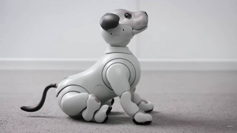 https: img.okezone.com content 2020 06 21 56 2233879 robot-anjing-aibo-dibekali-kemampuan-menyapa-manusia-AWCOUZsinQ.jpg