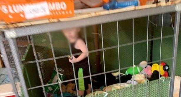 https: img.okezone.com content 2020 06 30 18 2238773 gerebek-rumah-polisi-temukan-bocah-kelaparan-dalam-kandang-dikelilingi-ratusan-hewan-nrZy6EKKll.jpg