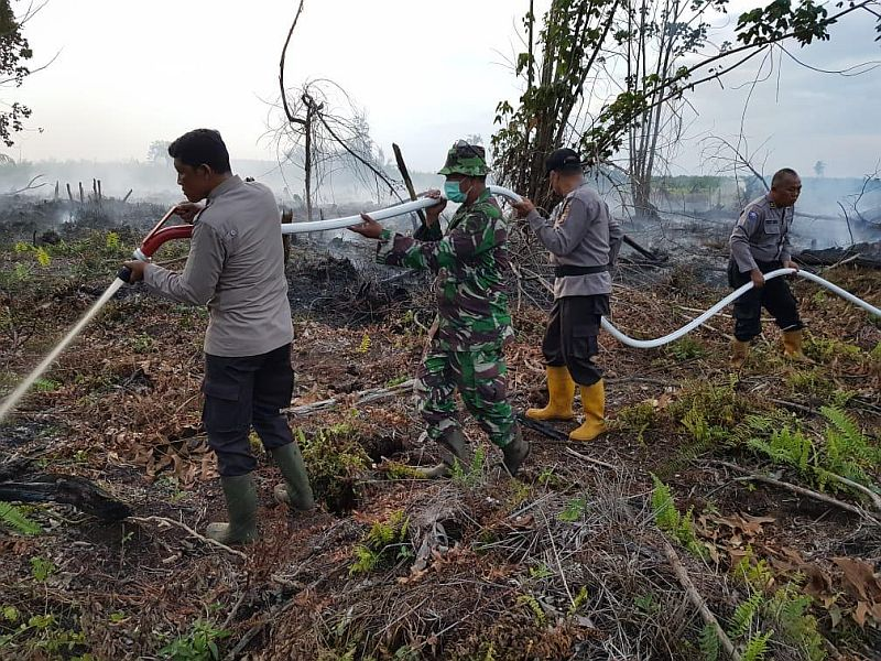 https: img.okezone.com content 2020 07 05 340 2241560 258-desa-di-provinsi-jambi-rawan-bencana-karhutla-EOV7hBTduy.jpg