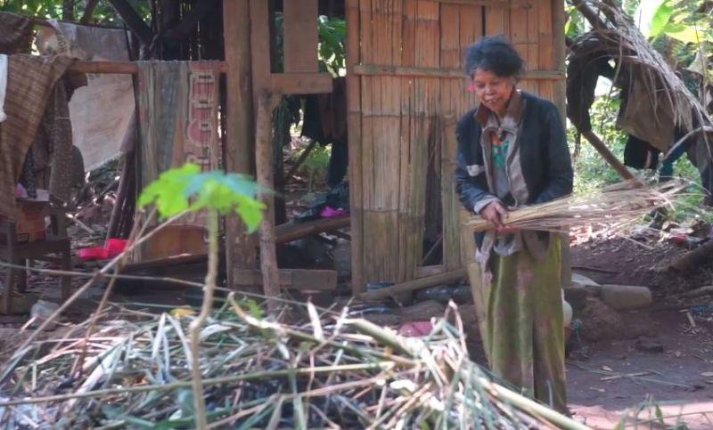 https: img.okezone.com content 2020 07 13 519 2245486 nenek-moah-puluhan-tahun-tinggal-sebatang-kara-di-gubuk-reot-di-tengah-hutan-tSz5Wf4PoH.jpg