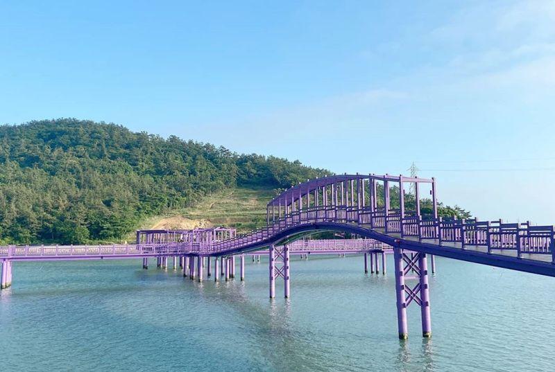 https: img.okezone.com content 2020 07 14 406 2246303 berkunjung-ke-pulau-ungu-di-korea-tempat-yang-serba-ungu-Ha4CKKexkF.jpg