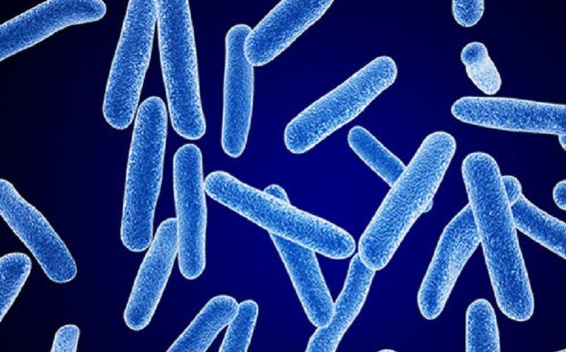 https: img.okezone.com content 2020 07 20 481 2249289 ini-pentingnya-bakteri-baik-bagi-tubuh-8Q7R6YnsqH.jpg