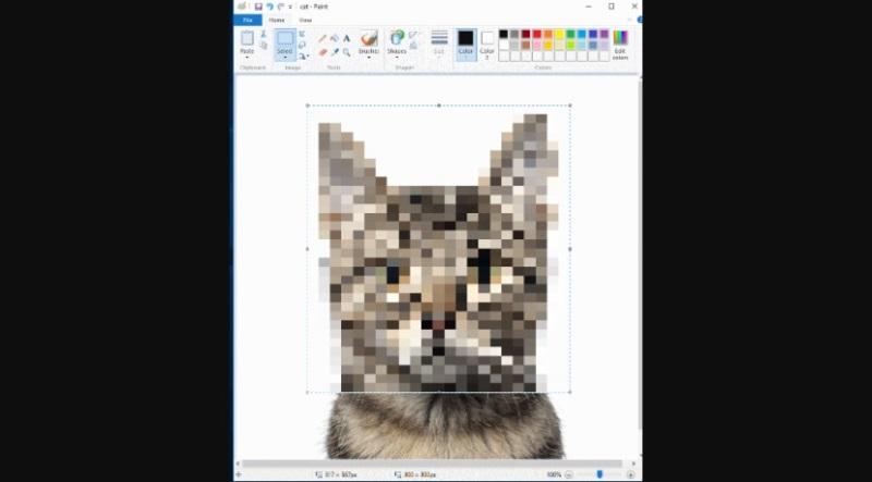 https: img.okezone.com content 2020 07 25 16 2252051 cara-mudah-blur-gambar-pakai-microsoft-paint-iJuXVFZVRD.jpg