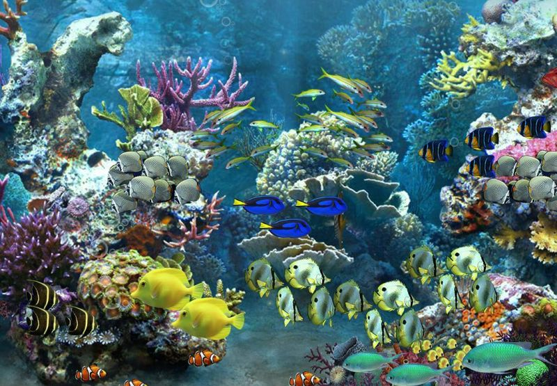 https: img.okezone.com content 2020 07 28 406 2253319 isi-waktu-di-rumah-ajak-anak-peduli-laut-lewat-tur-virtual-koXd8SuAti.jpg