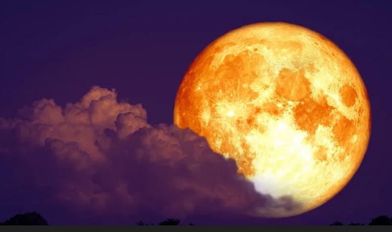 https: img.okezone.com content 2020 07 29 612 2253894 3-agustus-dunia-akan-saksikan-fenomena-bulan-the-full-sturgeon-moon-mcnIlL7MsB.jpg