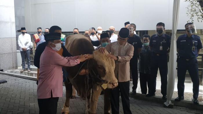 https: img.okezone.com content 2020 07 31 338 2254965 gubernur-anies-lebih-dari-800-sapi-kurban-dipotong-di-rph-dharma-jaya-WyL05IoW4R.jpg