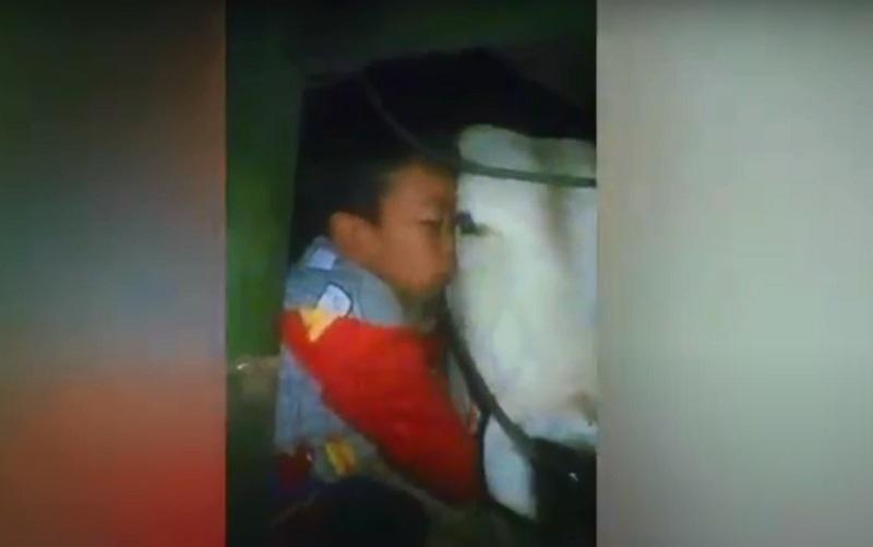 https: img.okezone.com content 2020 08 02 337 2255633 menangis-memeluk-sapi-kesayangan-yang-akan-disembelih-remaja-agam-jadi-viral-fohx9Xz5ma.jpg