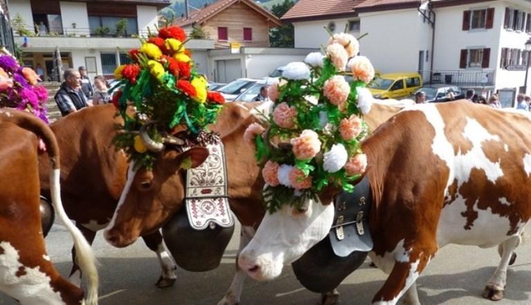 https: img.okezone.com content 2020 08 02 614 2255612 tradisi-unik-perayaan-idul-adha-di-10-negara-dari-china-hingga-turki-pHuAHOSoGr.jpg