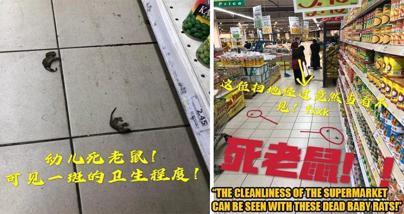 https: img.okezone.com content 2020 08 12 612 2261271 belanja-ke-supermarket-wanita-ini-temukan-banyak-tikus-mati-nOJDfxYVZm.jpg