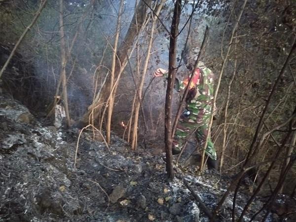 https: img.okezone.com content 2020 08 18 525 2264013 polisi-selidiki-penyebab-kebakaran-hutan-di-gunung-ciremai-acRNQcRcnV.jpg