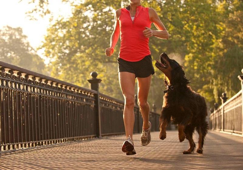 https: img.okezone.com content 2020 08 19 481 2264648 jogging-atau-lari-mana-yang-lebih-cepat-turunkan-berat-badan-fx7QSNPm4x.jpg