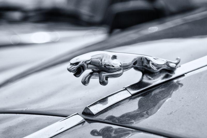 https: img.okezone.com content 2020 08 28 52 2268800 jaguar-bakal-hadirkan-mobil-listrik-terbarunya-2esBwWL60B.jpg