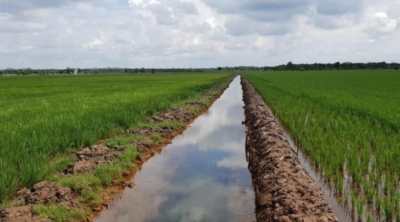 https: img.okezone.com content 2020 09 01 320 2270699 4-langkah-agar-lahan-pertanian-tak-dialihfungsikan-jadi-perumahan-vZbgJVfWrU.jpg