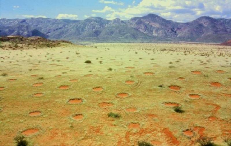 https: img.okezone.com content 2020 09 04 16 2272788 ilmuwan-jelaskan-fenomena-lingkaran-misterius-di-namibia-c4yoc87gN6.jpg