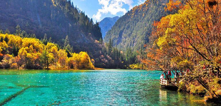 https: img.okezone.com content 2020 09 05 408 2272976 7-hutan-paling-menakjubkan-di-dunia-cocok-untuk-petualangan-yGOFF3V4SB.jpg